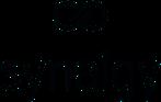 Synaigy Logo